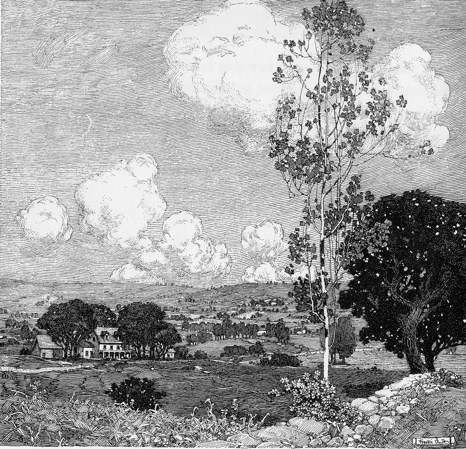 Ink Illustration: Eye Candy For Today: Franklin Booth Pen And Ink Landscape